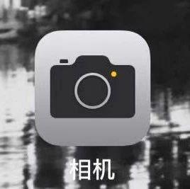 iPhone 相机还可以制作动态壁纸?get